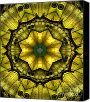 Scanner Canvas Prints - Yellow Butterfly Wing Kaleidoscope Mandala Canvas Print by Janeen Wassink Searles