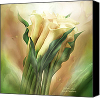 Calla Lily Mixed Media Canvas Prints - Yellow Callas Canvas Print by Carol Cavalaris