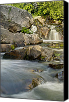 Michigan Waterfalls Canvas Prints - Yellow Dog Falls 4246 Canvas Print by Michael Peychich