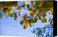 Water Art Canvas Prints - Yellow Leaf Reflections Canvas Print by Bill Brennan - Printscapes