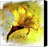 Works Canvas Prints - Yellow lily Canvas Print by Bernard Jaubert