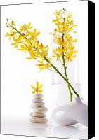 Color Harmony Canvas Prints - Yellow Orchid Bunchs Canvas Print by Atiketta Sangasaeng