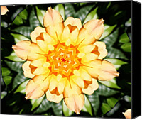 Flower Design Canvas Prints - Yellow Rose Kaleidoscope  Canvas Print by Cathie Tyler