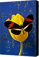 Wooden Tapestries Textiles Canvas Prints - Yellow Tulip With Orange and Black Butterfly Canvas Print by Garry Gay