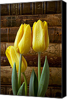 Reading Canvas Prints - Yellow tulips and old books Canvas Print by Garry Gay