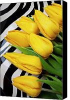 Tulips Canvas Prints - Yellow tulips on striped plate Canvas Print by Garry Gay