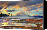 Heat Canvas Prints - Yellowstone National Park-mammoth Hot Springs Canvas Print by Kevin McNeal