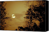 Digiart Canvas Prints - Yesteryears Moon Canvas Print by DigiArt Diaries by Vicky Browning