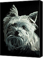 Dog Painting Canvas Prints - Yorkie Canvas Print by Enzie Shahmiri