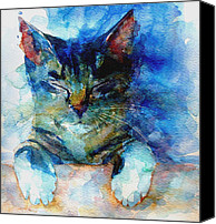 Feline  Canvas Prints - Youve Got A Friend Canvas Print by Paul Lovering