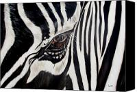 Animal Painting Canvas Prints - Zebra Eye Canvas Print by Ilse Kleyn