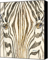 Zebra Pastels Canvas Prints - Zebra Face Canvas Print by Flo Hayes