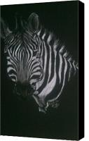 Zebra Pastels Canvas Prints - Zebra Face Canvas Print by Michelle Spragg