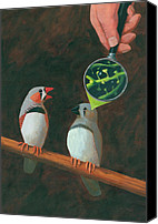 Scientific Canvas Prints - Zebra Finch Canvas Print by John Holdway
