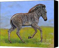 Foal Painting Canvas Prints - Zebra foal  Canvas Print by Svetlana Ledneva-Schukina