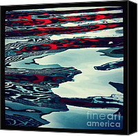 Distortion Canvas Prints - Zebra Killer Canvas Print by Andrew Paranavitana