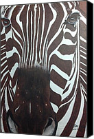 Black Ink Pastels Canvas Prints - Zebra  Canvas Print by Mary  By The Sea