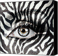 Yosi Cupano Canvas Prints - Zebra  Canvas Print by Yosi Cupano