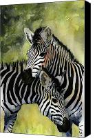 Eat Canvas Prints - Zebras Canvas Print by Roger Bonnick