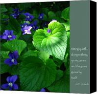 Zen Words Of Wisdom Canvas Prints - Zen Proverb with Violets Canvas Print by Heidi Hermes