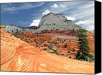 Waves Canvas Prints - Zion National Park as a storm rolls in Canvas Print by Christine Till