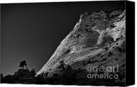Mountain View Canvas Prints - Zion National Park lV Canvas Print by Hideaki Sakurai
