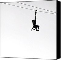 Igerseastbay Canvas Prints - Zipline Canvas Print by David Root