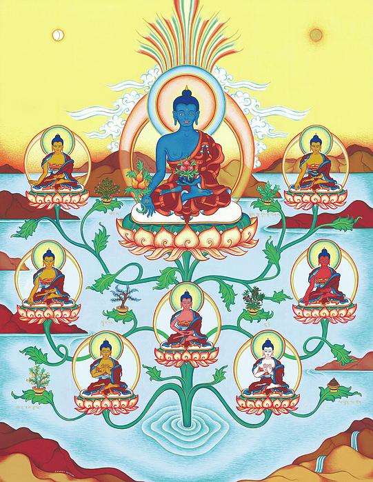 8 Medicine Buddhas Print by Carmen Mensink