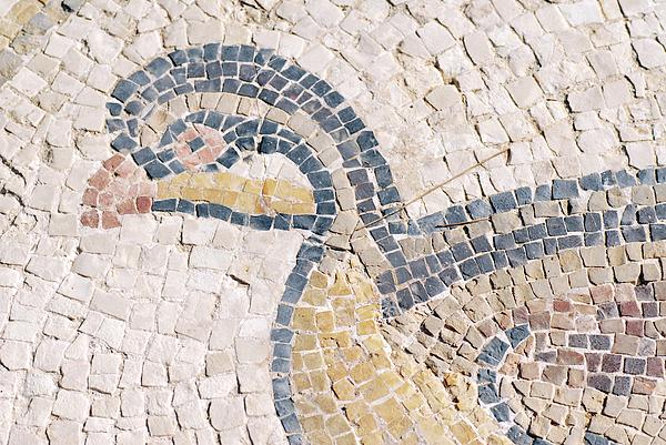 Bird Mosaic Print by Tal Bedrack