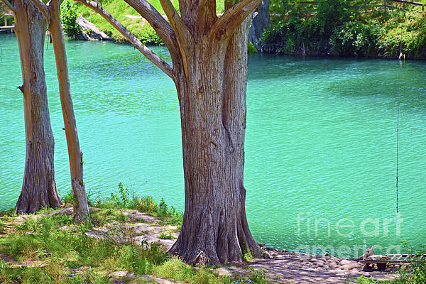 Ray Shrewsberry - Blanco River Texas