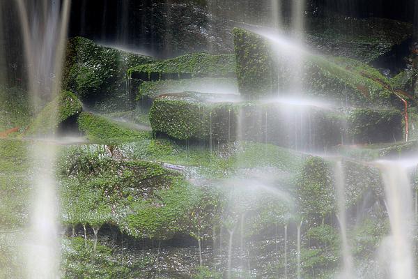 Glenn Vidal - Elakala Falls