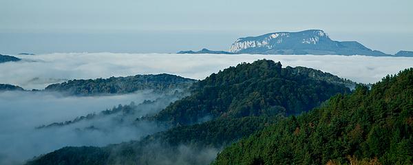 Mist Over Apuseni Print by Gabriela Insuratelu