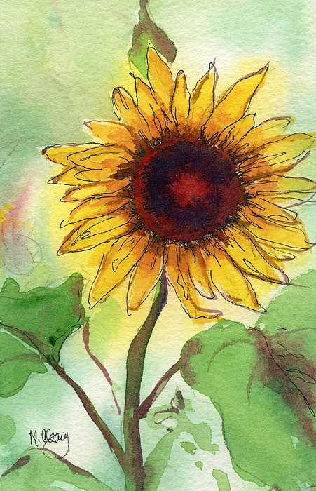 Sunflower Print by MaryAnn Cleary
