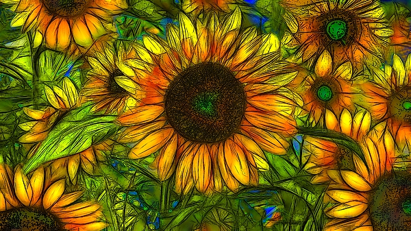 Jean-Marc Lacombe - Sunflowers