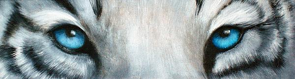 Darlene Green - Whos Watching Who...White Tiger