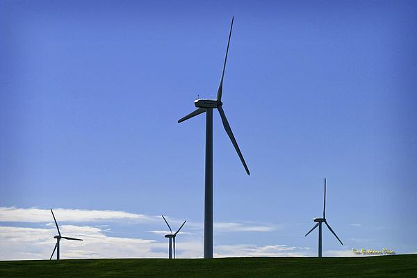 Windy Power Print by Tom Buchanan