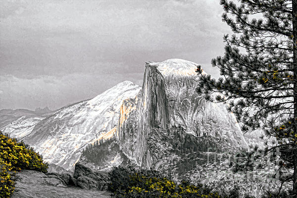 Yosemite Half Dome Print by Chuck Kuhn