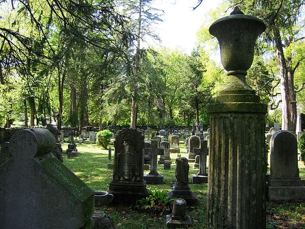 18th Century Cemetery In Virginia Print by Don Struke