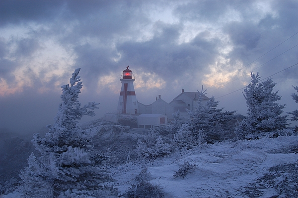 East Quoddy Lighthouse 36 Below Print by Don Dunbar