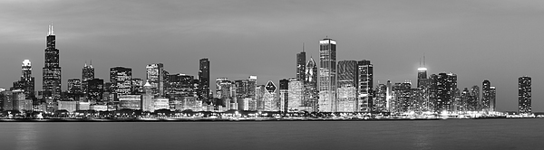 2010 Chicago Skyline Black And White Print by Donald Schwartz