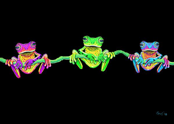 Nick Gustafson - 3 Little Frogs