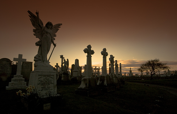 The Graveyard Print by Angel  Tarantella