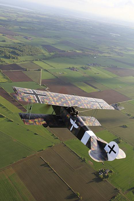 Fokker D.vii World War I Replica Print by Daniel Karlsson