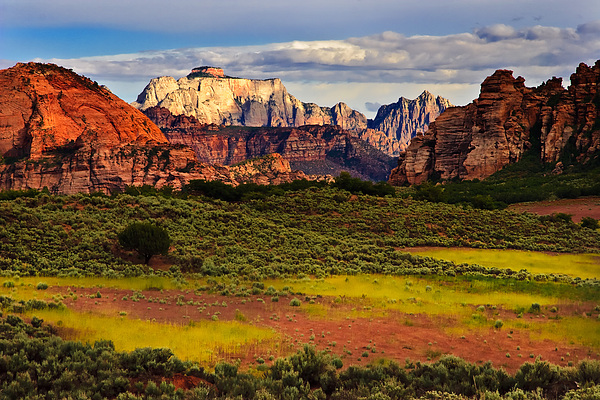 Zion National Park Utah Print by Utah Images