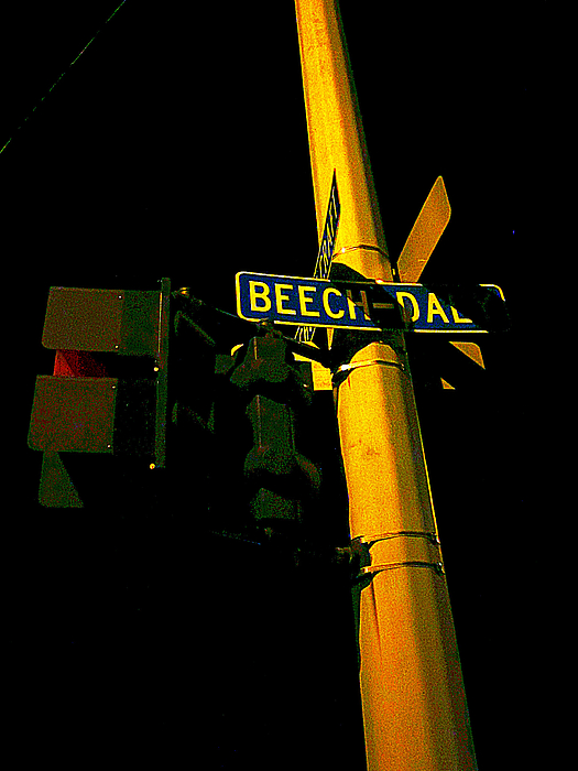 Guy Ricketts - A Corner of Beech Daly