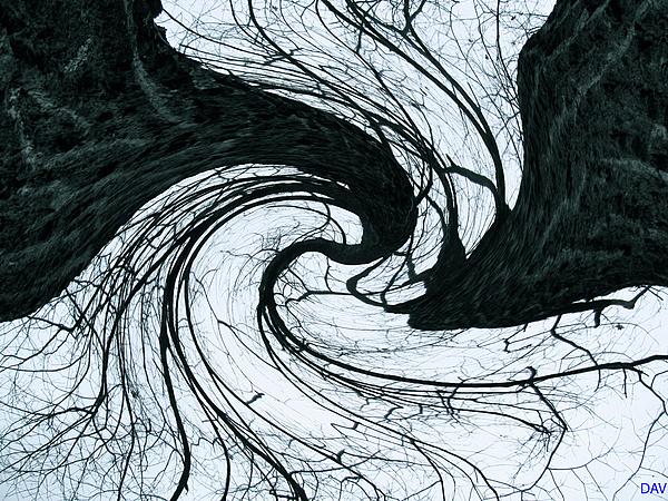 A Twist Of Oak Print by Debra     Vatalaro