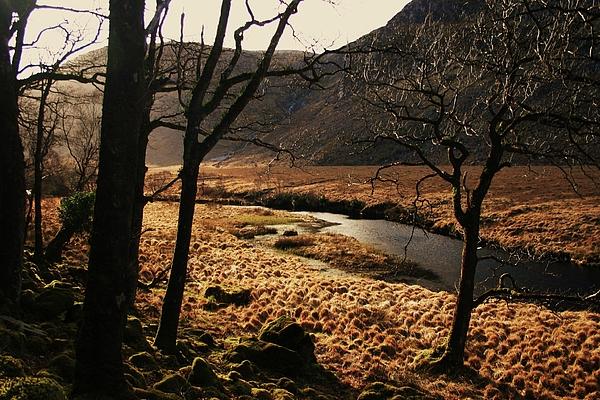 Martina Fagan - A walk in Donegal