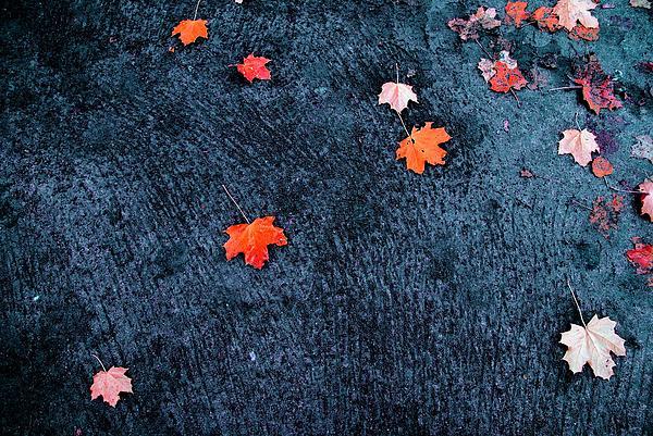 Vadim Grabbe - About autumn