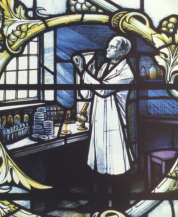 Alexander Fleming, Scottish Biologist Print by Science Source