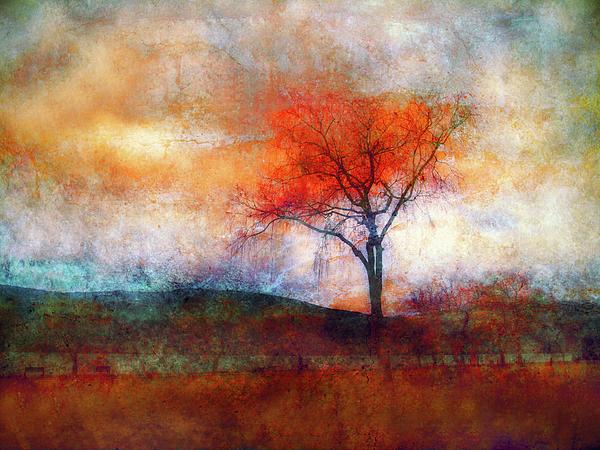 Alone In Colour Print by Tara Turner